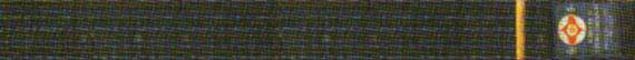 Квалификационные нормативы Федерации Кёкусинкай России (IFK) на чёрный пояс с одной золотой полоской Сёдан – 1 дан