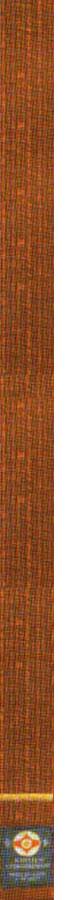 1-й кю — коричневый пояс с золотой (желтой) полоской