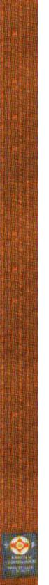 2-й кю - коричневый пояс