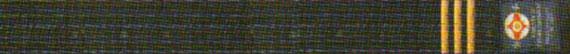 Квалификационные нормативы Федерации Кёкусинкай России (IFK) на чёрный пояс с тремя золотыми полосками Сандан – 3 дан