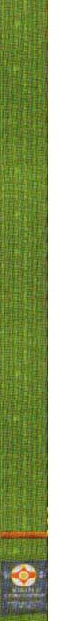 3-й кю - зеленый пояс с коричневой полоской
