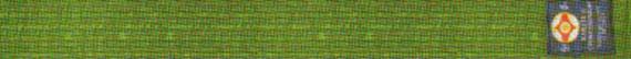 Квалификационные нормативы Федерации Кёкусинкай России (IFK) на 4 кю – зеленый пояс