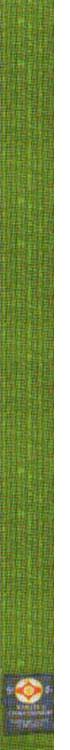 4-й кю – зеленый пояс