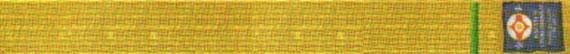 Квалификационные нормативы Федерации Кёкусинкай России (IFK) на 5 кю – желтый пояс с зеленой полоской