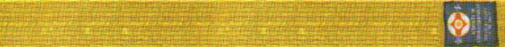 Квалификационные нормативы Федерации Кёкусинкай России (IFK) на 6 кю – желтый пояс