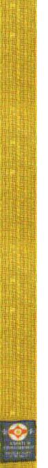 6-й кю - желтый пояс