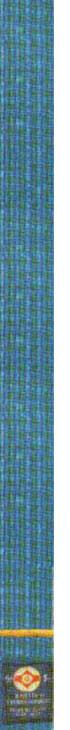7-й кю - голубой пояс с желтой полоской