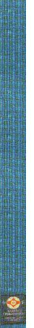 8-й кю - голубой пояс